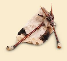 Коза (дуда)
